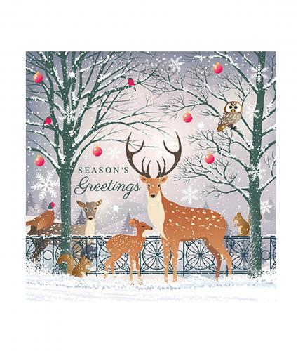 Cancer Research UK, Friends of the Forest Christmas Card