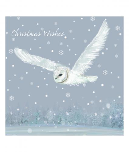 owl in flight cancer research uk christmas card