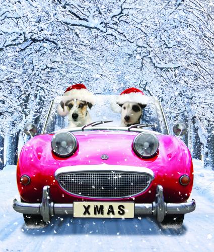 chip and charlie bi-lingual christmas card