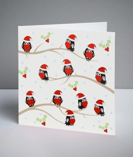Mini Robin Christmas Cards, Pack of 10