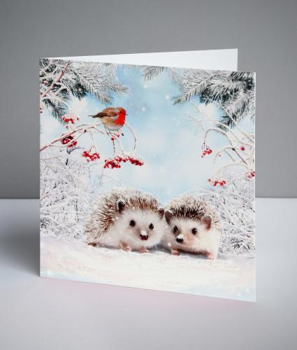 Festive Prickly Friends Christmas Cards, Pack of 10