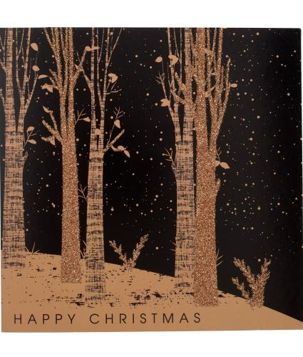 Magical Winter Christmas Cards - Pack of 10