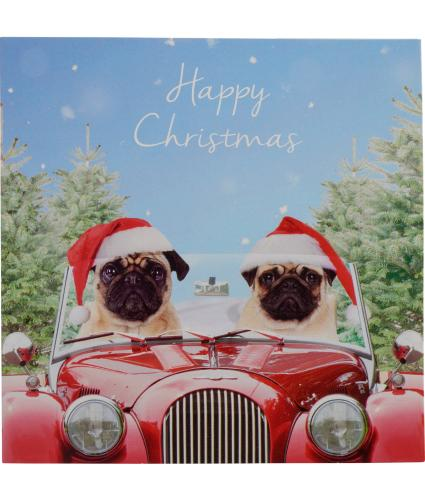 Pugs At Christmas Christmas Cards - Pack of 20