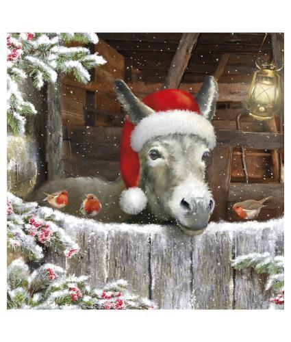 Festive Donkey Welsh Christmas Cards - Pack of 10