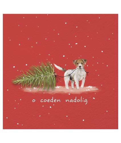 Oh Christmas Tree Welsh Bilingual Christmas Cards - Pack of 10 / O Coeden Nadolig Cardiau Nadolig Dwyieithog - Pecyn o 10