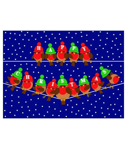 Fun Robin Duo Christmas Cards - Pack of 16
