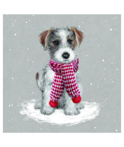 Jack's Scarf Christmas Cards - Pack of 10