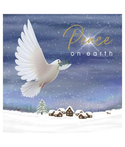 Peace and Goodwill Christmas Cards - Pack of 10