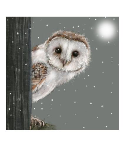 Peeping Percy Christmas Cards - Pack of 10