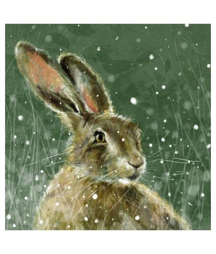 Hare In Midwinter Christmas Cards - Pack of 20