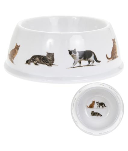 Cat Breeds Bowl