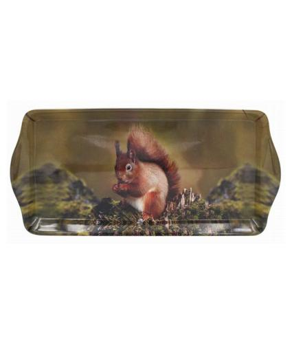 Red Squirrel Wildlife Tray - Medium