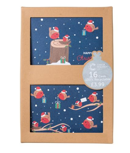 Fun & Festive Robins Duo Recyclable Christmas Cards - Pack of 16