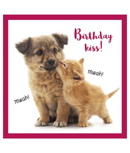 Birthday Kiss Birthday Card