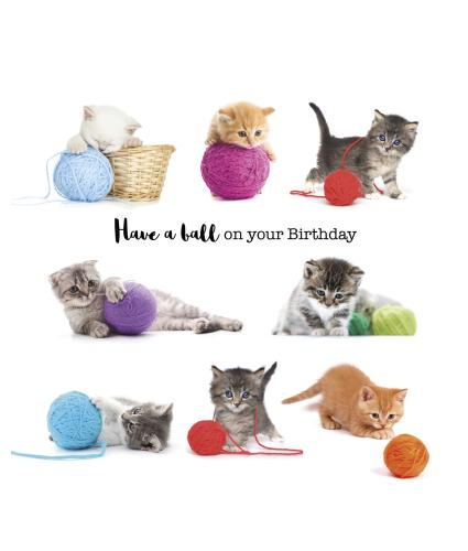 Playful Kittens Birthday Card
