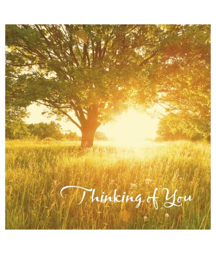 Meadow Thinking Of You Greetings Card
