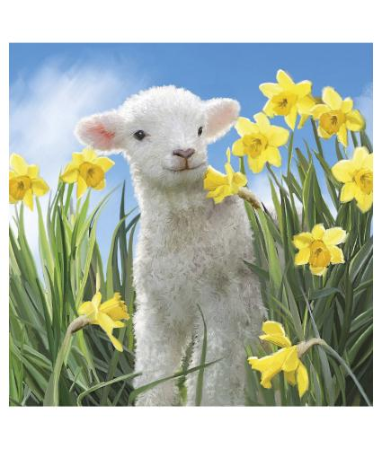 Smiley Lamb Easter Cards - Pack of 6