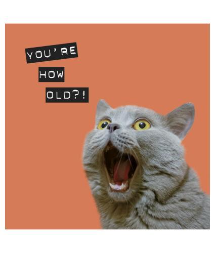 Surprised Kitty Birthday Card