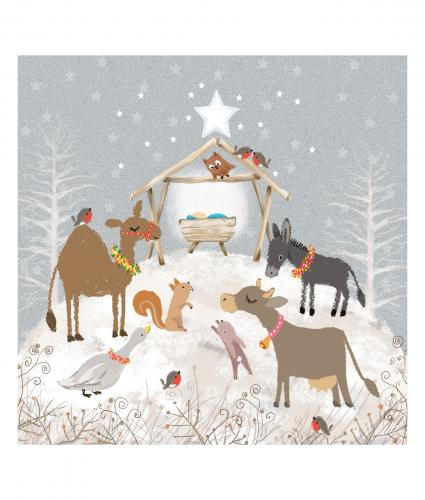 festive nativity cancer research uk christmas card