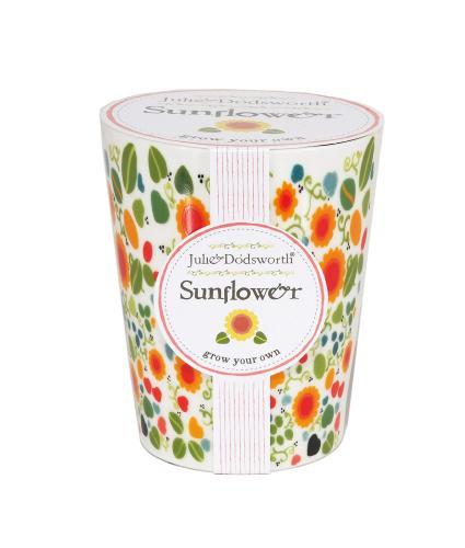 Grow Your Own Sunflower Pot