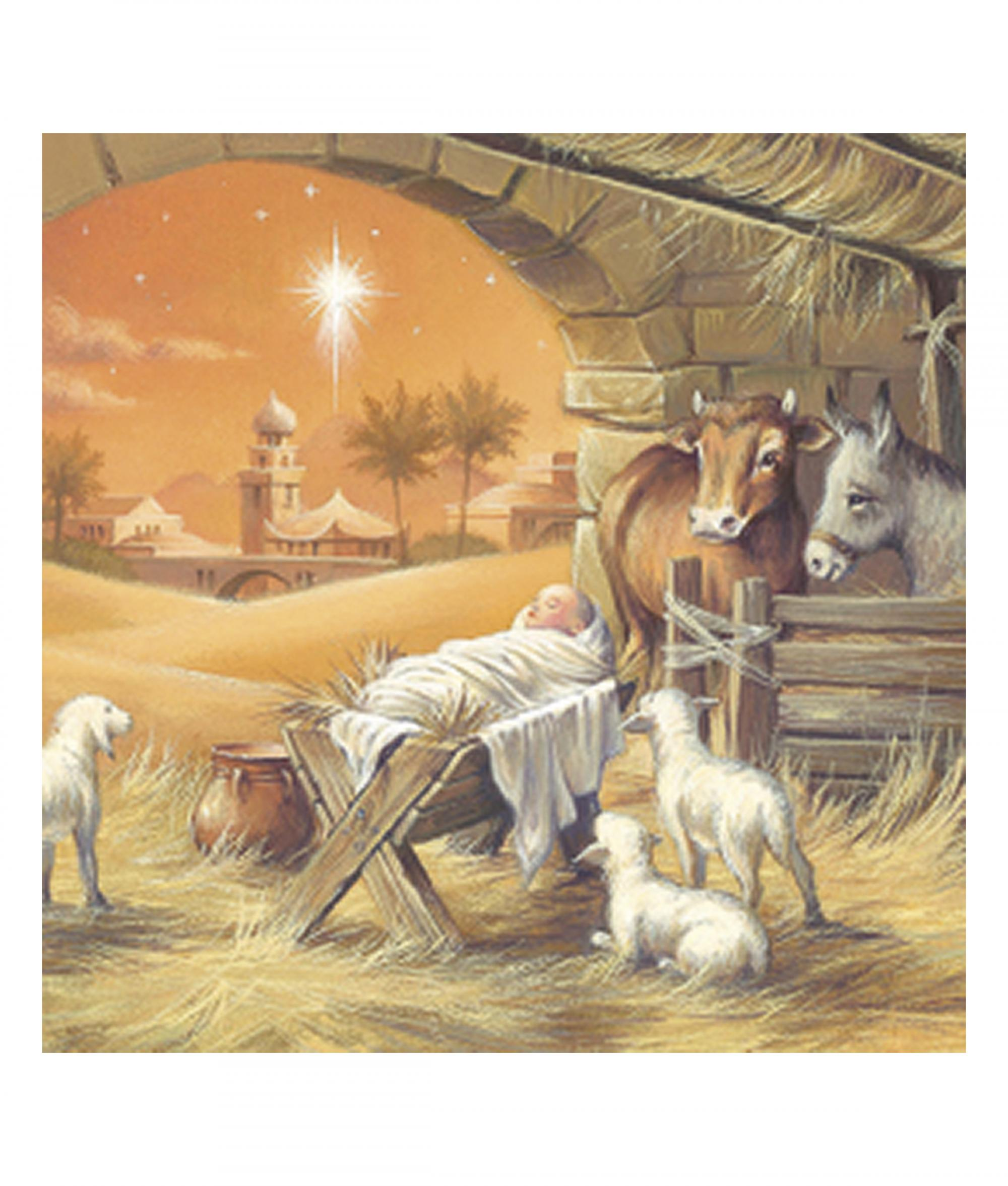 Amber Nativity Christmas Card - Pack of 10 | Cancer Research UK ...
