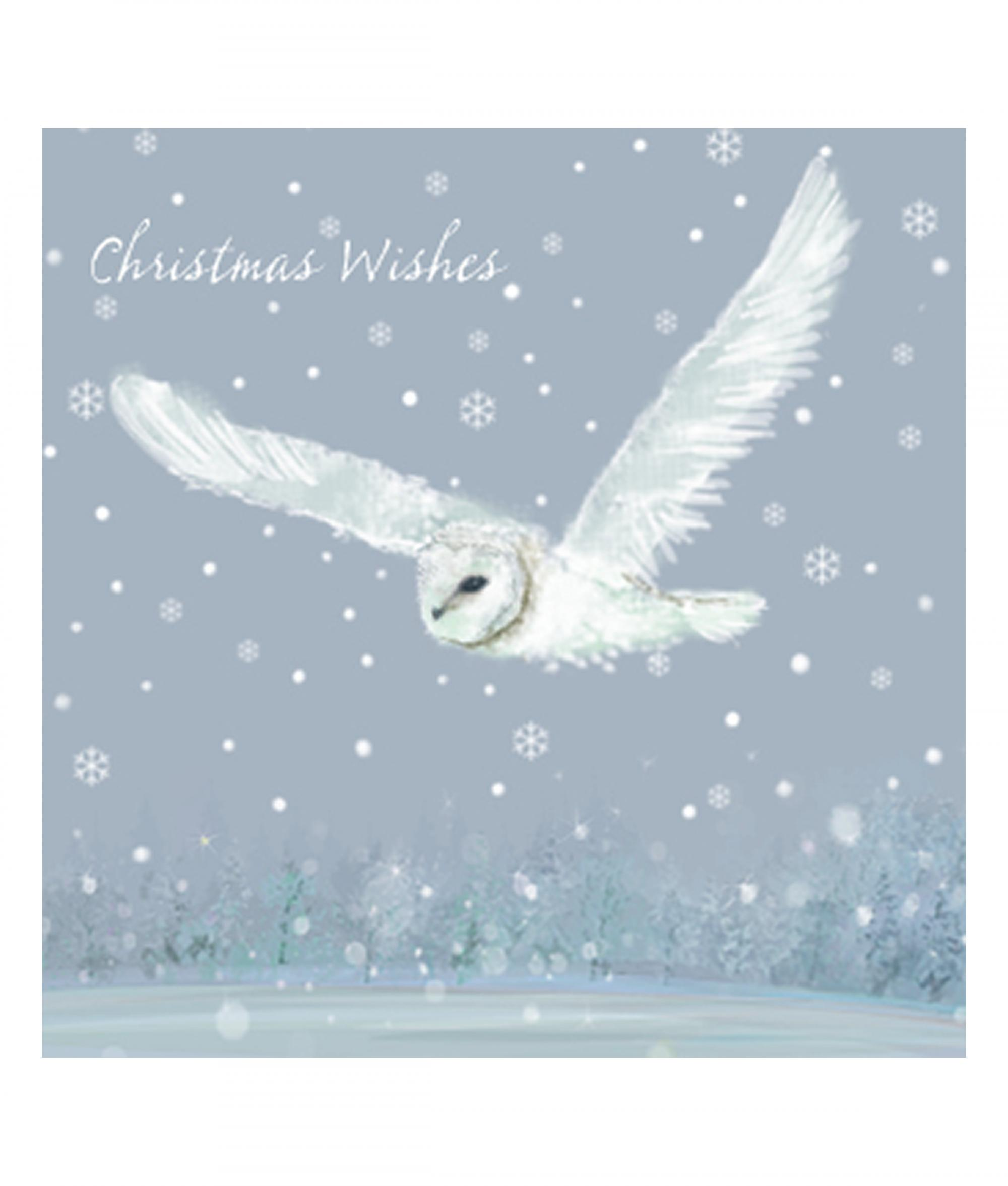 Owl in Flight Christmas Card - Pack of 10 | Cancer Research UK ...