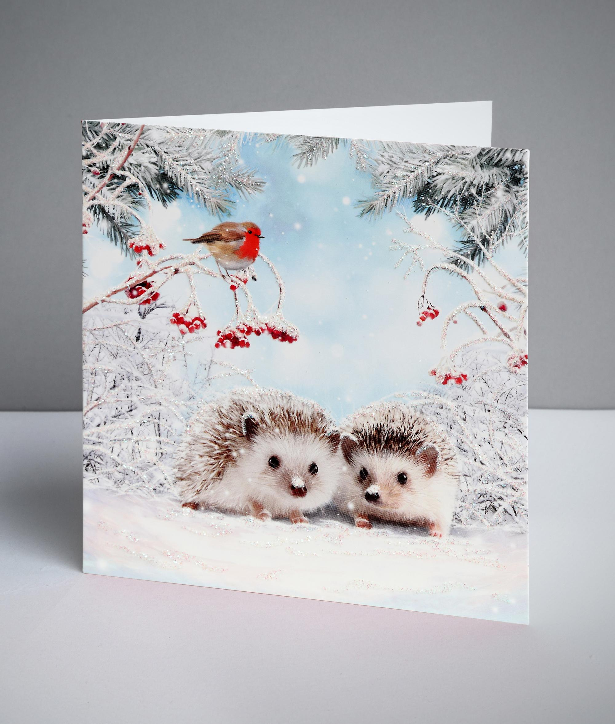 festive prickly friends christmas cards pack of 10