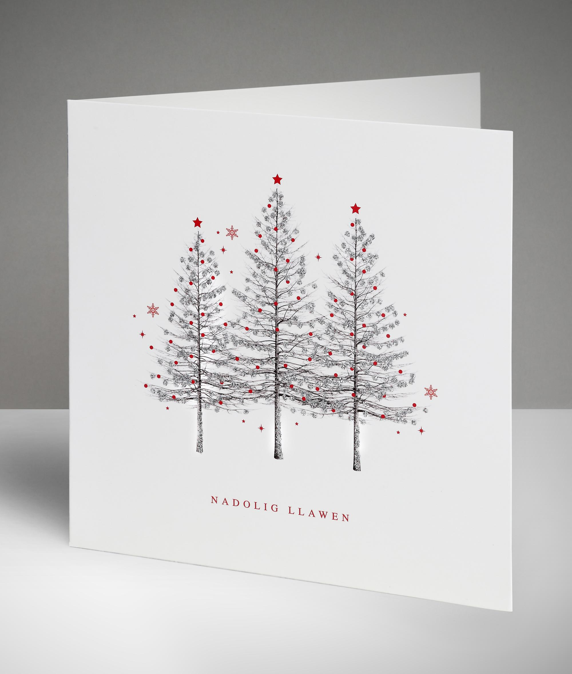 Sparkling trio welsh christmas cards pack of 10 cancer research sparkling trio welsh christmas cards pack of 10 kristyandbryce Image collections