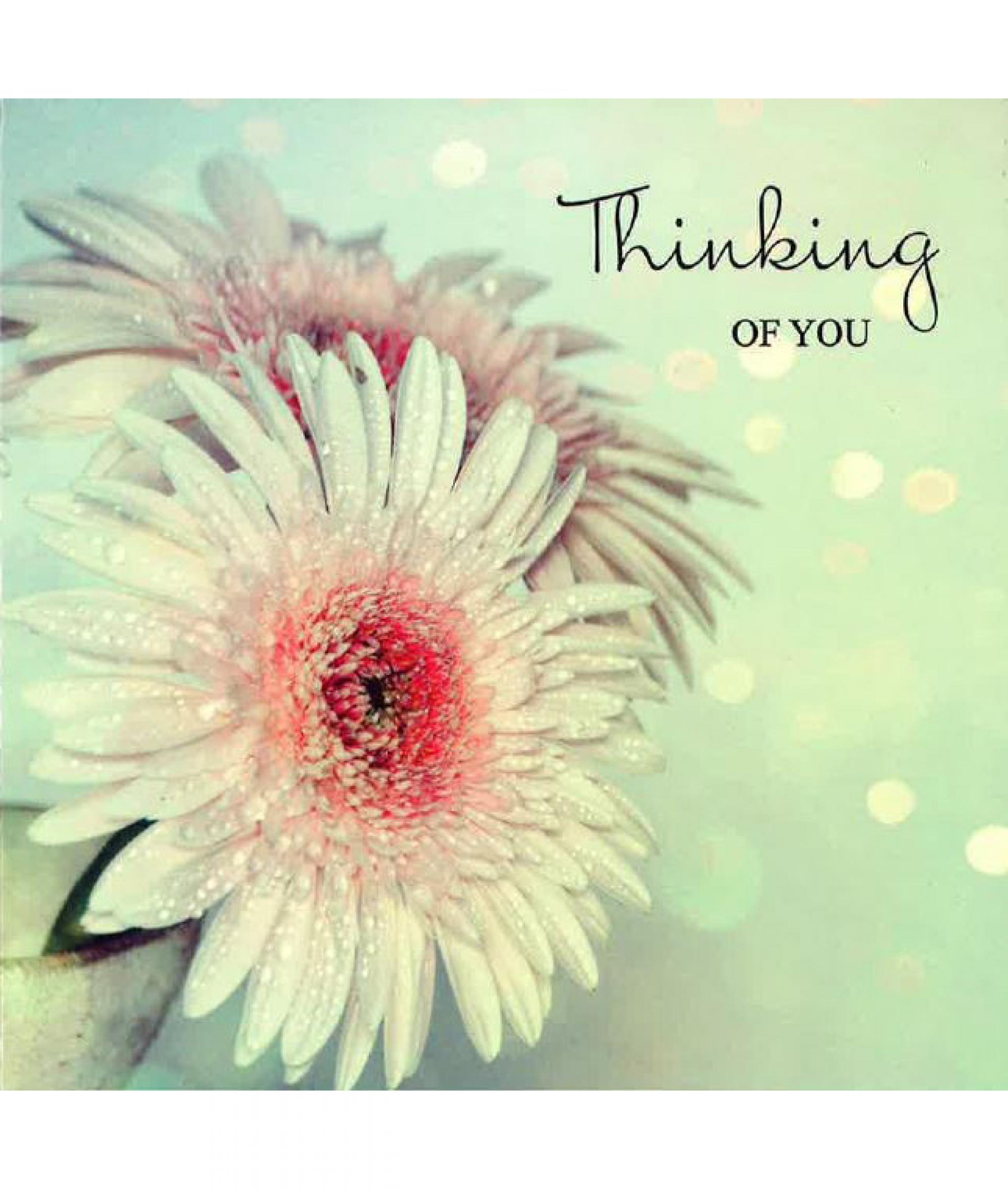 white flower thinking of you sympathy card cancer research uk