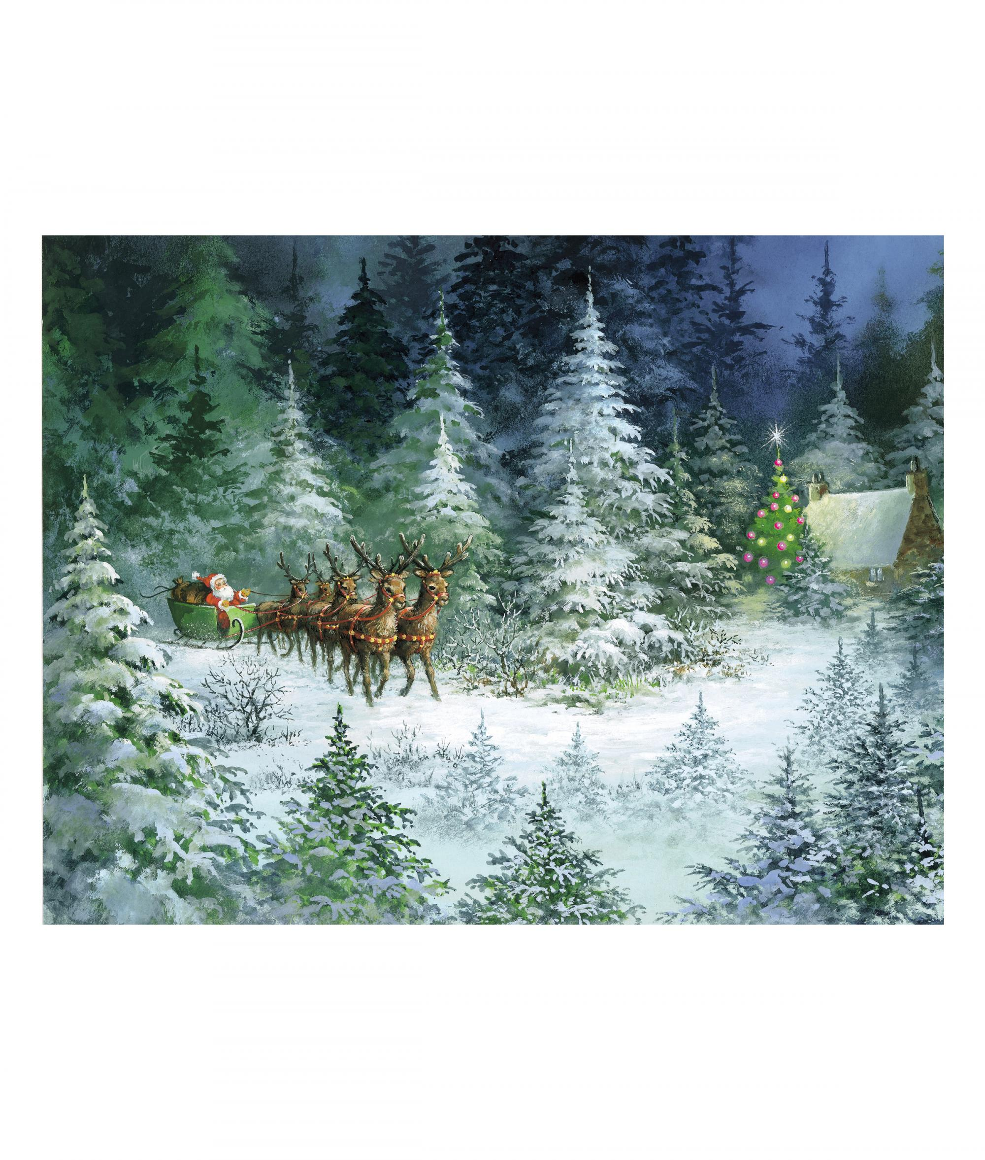 Sleigh in Forest bi-lingual Christmas Card - pack of 10 | Cancer ...