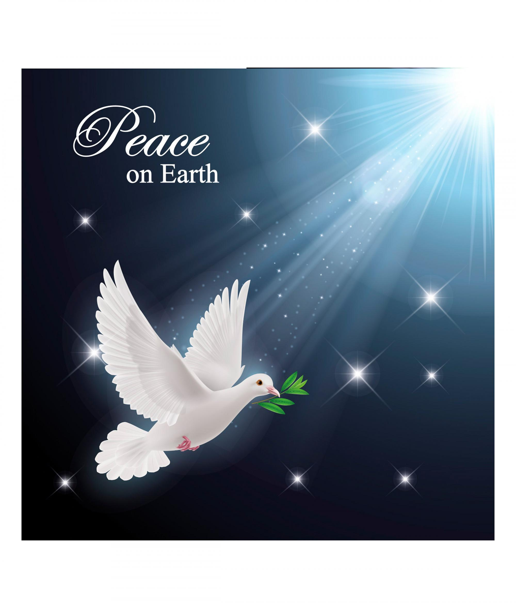 Stunning Dove Christmas Card - Pack of 10 | Cancer Research UK ...