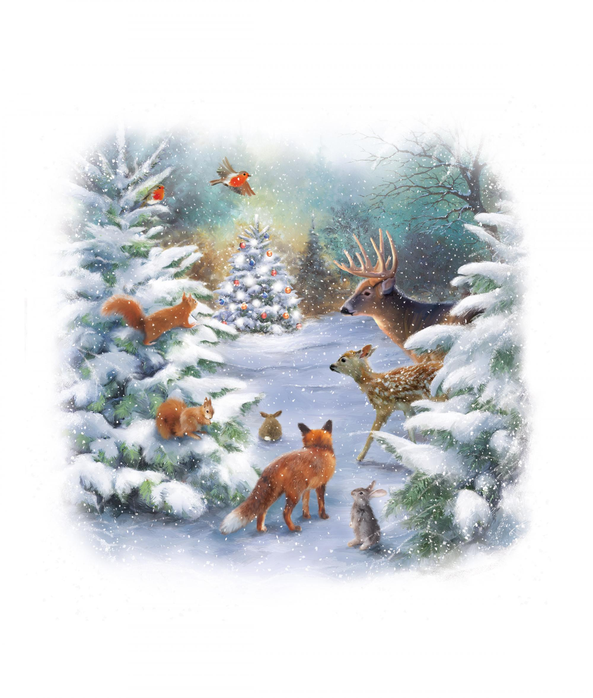 woodland christmas cancer research uk christmas card - Woodland Christmas