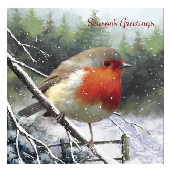 rufus the robin cancer research uk christmas card