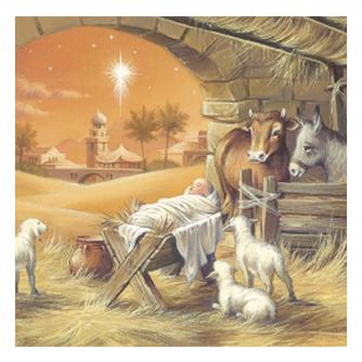 cancer research amber nativity christmas card