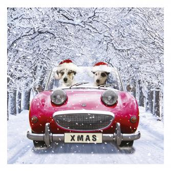 chip and charlie cancer research uk christmas card