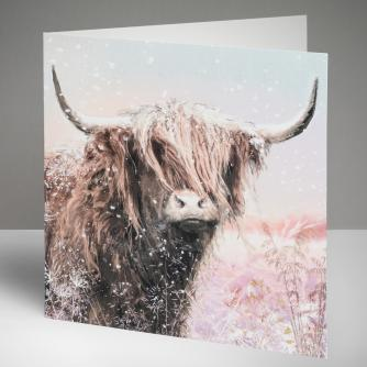 Archie the Highland Cow Christmas Cards, Pack of 10