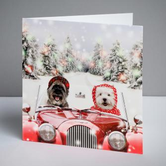Hector and Hetty Christmas Cards, Pack of 10