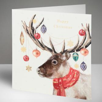 All Dressed Up Christmas Cards, Pack of 10