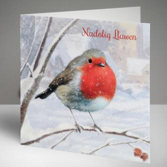 Robin - Welsh Christmas Cards, Pack of 10