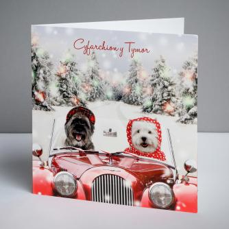 Hector and Hettie - Welsh Christmas Cards, Pack of 10