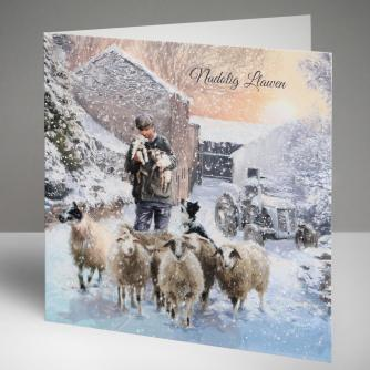 Winter Flock - Welsh Christmas Cards, Pack of 10
