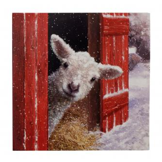 Little Lamb Christmas Cards - Pack of 10