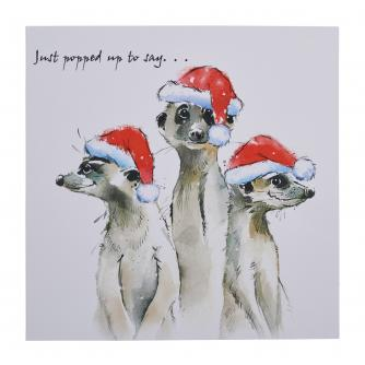 Which Way Is Christmas? Christmas Cards - Pack of 10