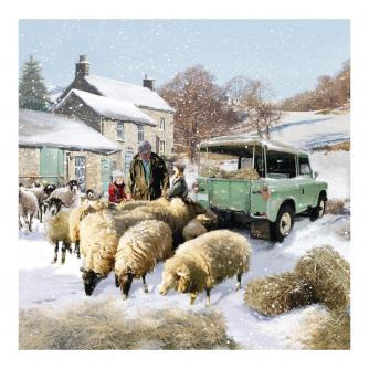 Sheep and Truck Christmas Cards - Pack of 10