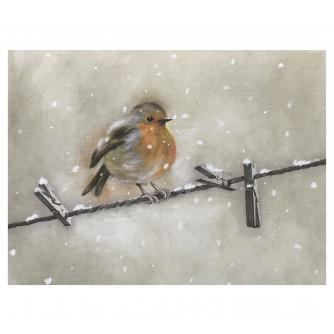 Illustrative Robin Duo Christmas Cards Pack of 16