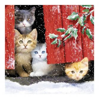 Peeking Through The Door Christmas Cards - Pack of 10