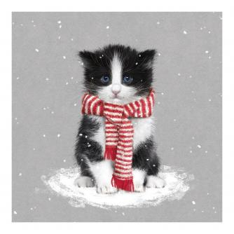 Christmas Cute Kitten Christmas Cards - Pack of 10