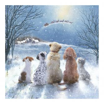 Magical Sight Christmas Cards - Pack of 10