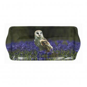 Owl Wildlife Tray