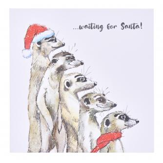 Meerkat's Looking Out For Santa Christmas Cards - Pack of 10
